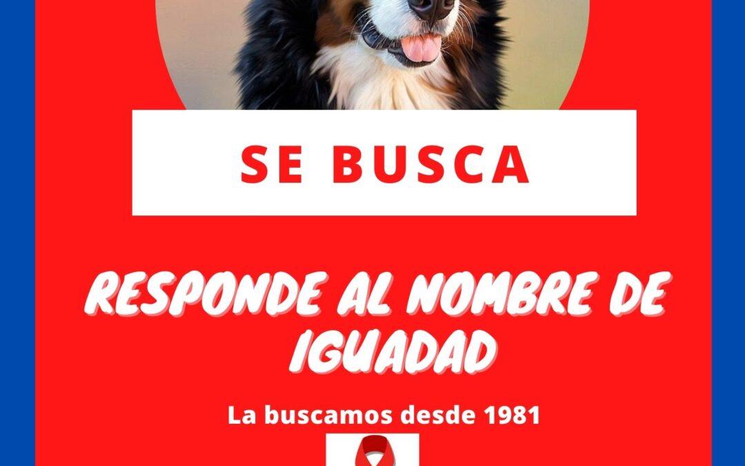 CAMPAÑA SE BUSCA IGUALDAD